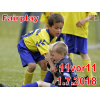 11v11-Fairplay-Juli18<div class='url' style='display:none;'>/</div><div class='dom' style='display:none;'>ref-oe.ch/</div><div class='aid' style='display:none;'>781</div><div class='bid' style='display:none;'>11629</div><div class='usr' style='display:none;'>4</div>